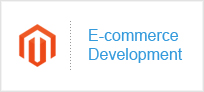 E-commerce Development